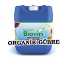 Konya Şeker, Türk tarımına yeni bir ürün daha kazandırdı.